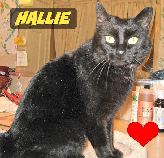 Hallie-1.jpg